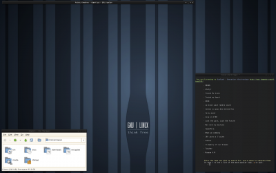 Openbox Screenshot: July 2008